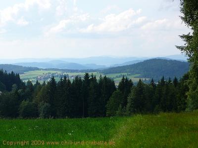 Blick von unterhalb der Gsteinachhöhe