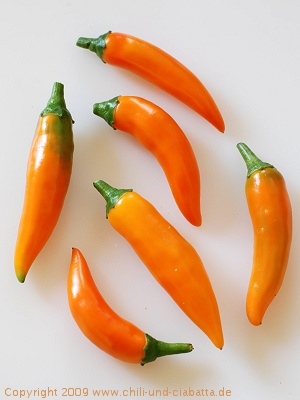 Chilis Bulgarian Carrots