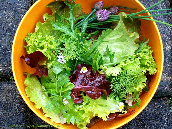 gemischte Salate aus dem Garten