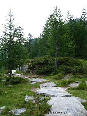 Granitplattenweg
