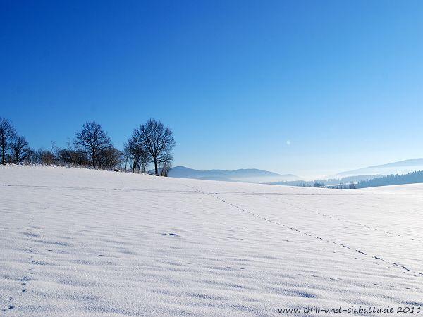 Winterspaziergang 2010