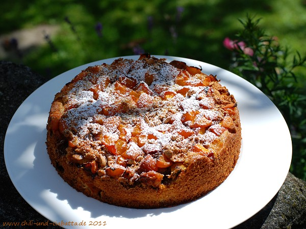 Saftiger Aprikosenkuchen mit Amarettini
