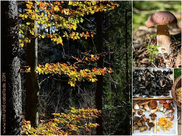 Herbstlaub, Pilze