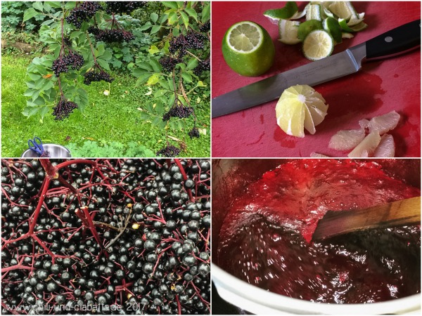 Holunderbeeren Collage