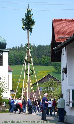 Maibaum Fernsdorf