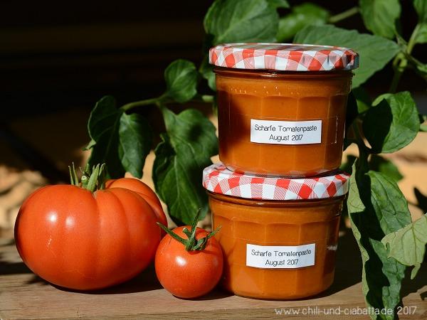 Scharfe Tomatenpaste