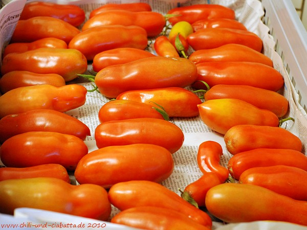 Tomaten Corianne